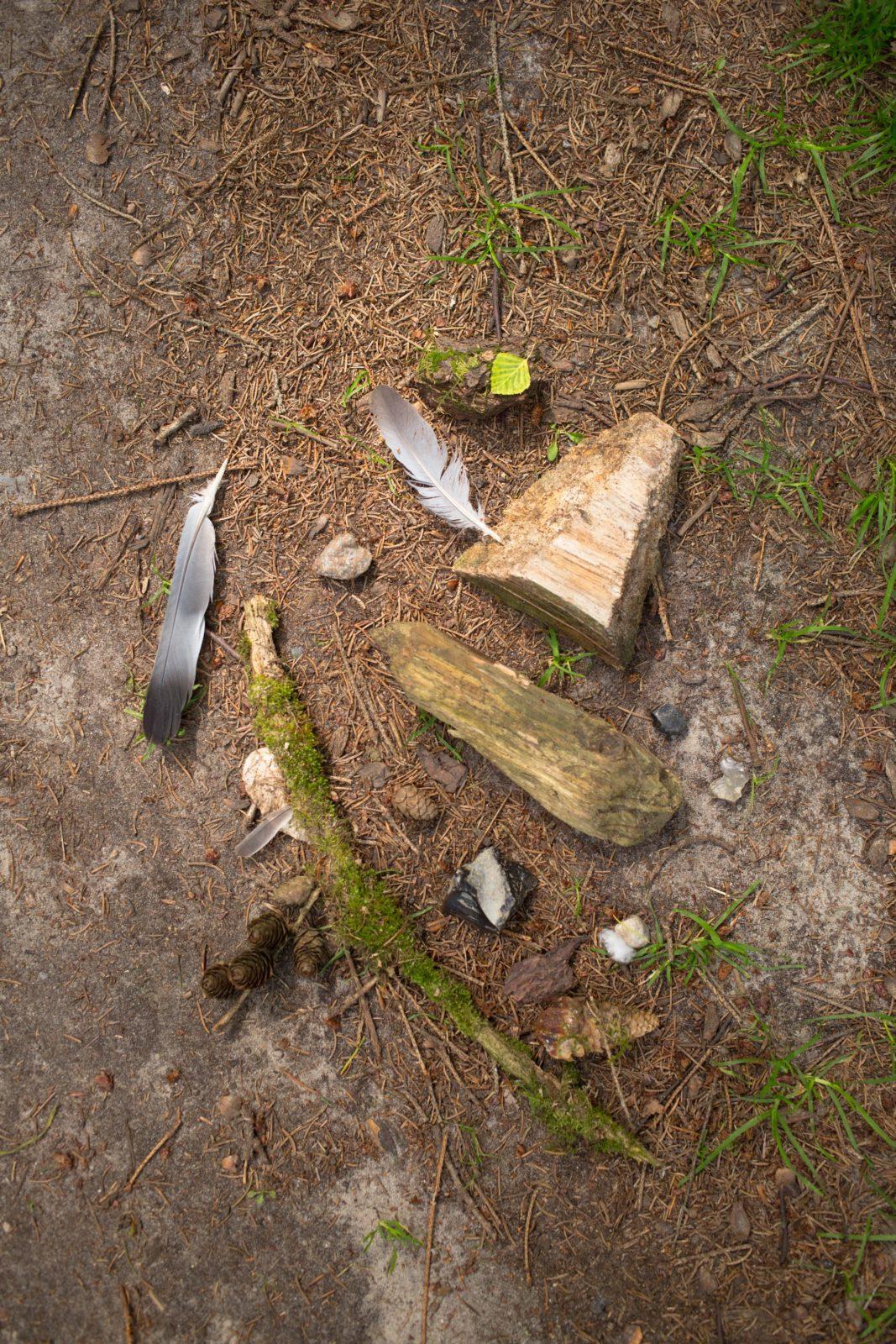 Lara Keuthen über Waldbaden – oder: Warum wir neue Wege finden müssen, wie wir mit unseren Wäldern arbeiten / Foto: Lara Keuthe / GROSS∆RTIG